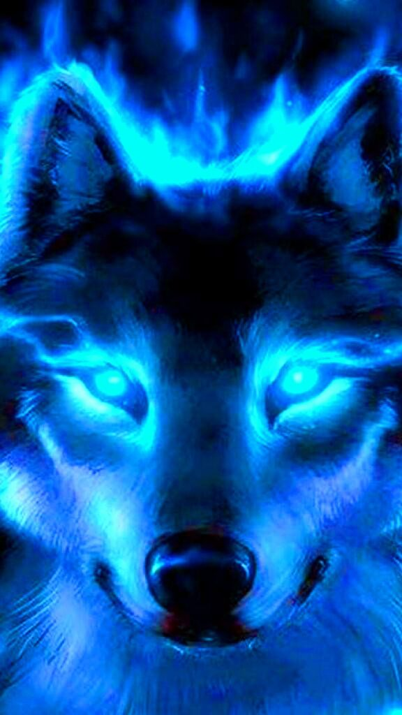 wolf android wallpaper hd
